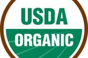 organic-food-baltimore